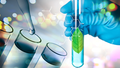 Colorkim Business Divisions | Textile Specialty Chemicals